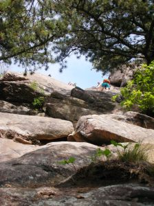 Breakneck's Rock Scrambles (there are easier routes)