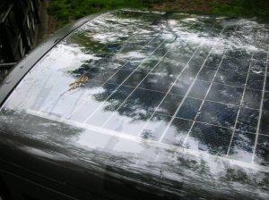 Solar Trash Compactor Panels