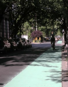 Newly Painted Bike Lane on Christopher St.